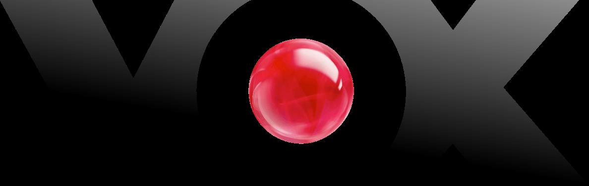VOX-Logo_2013-svg